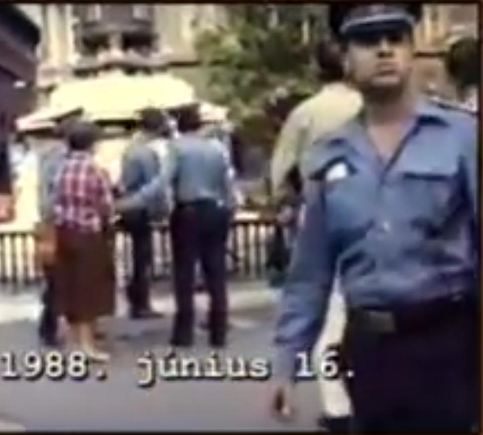 Still Image from the Documentary 'Plot #301'