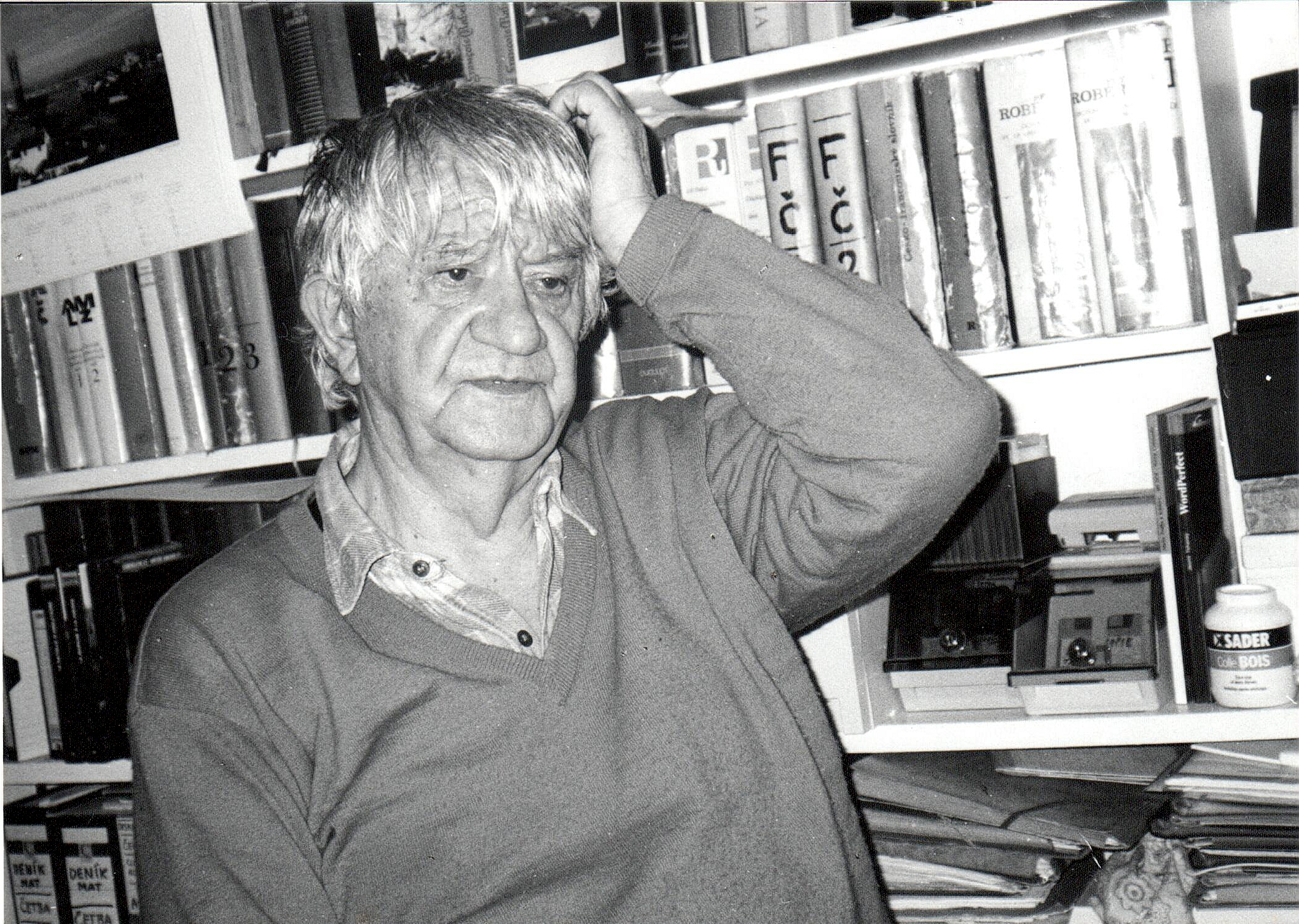 Jan Vladislav in 2000, Paris (illustrative photo)