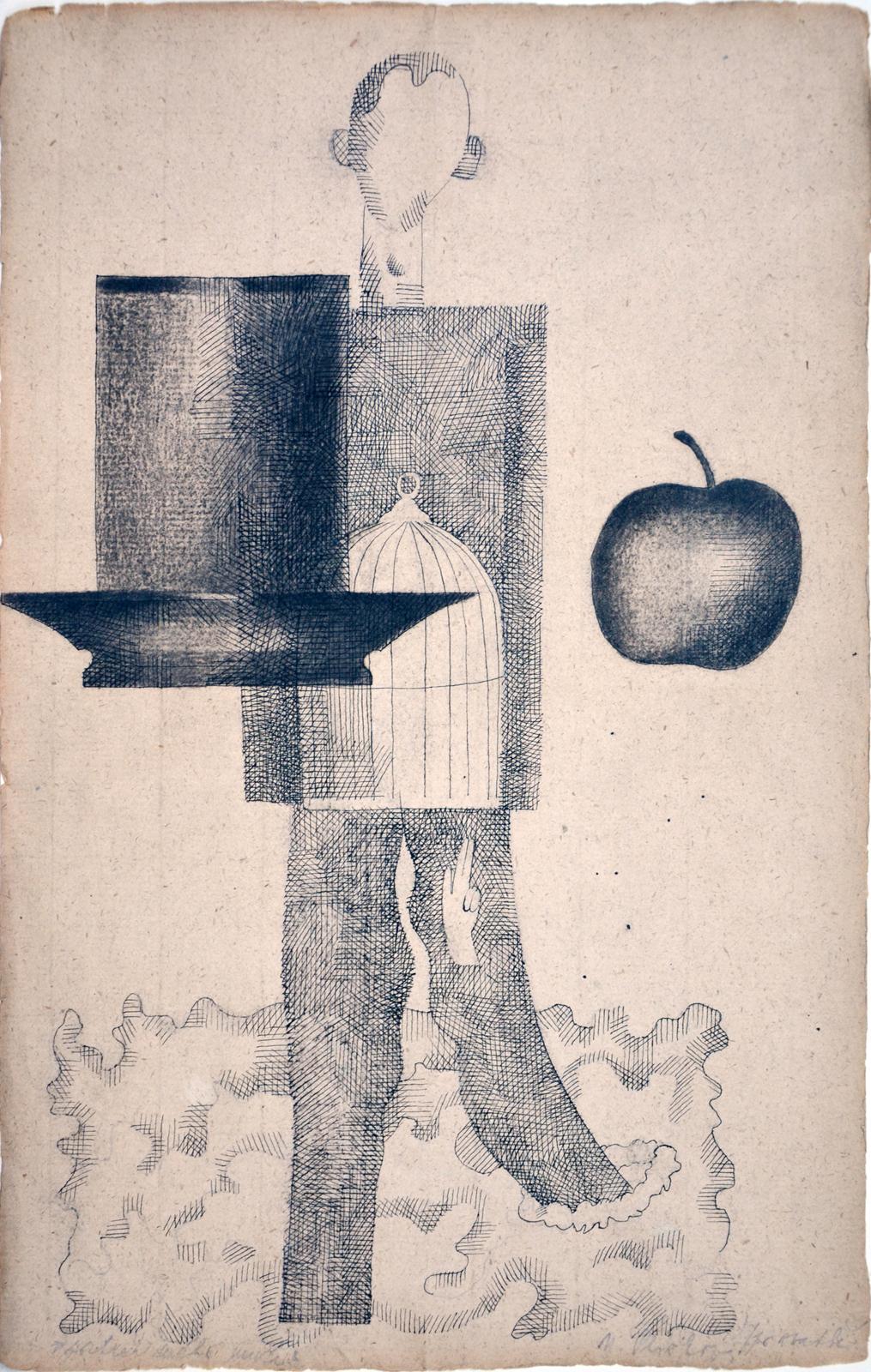 Naděžda Plíšková, Portrét mého muže (po svatbě), kresba tuší, 37 × 23 cm, 1964