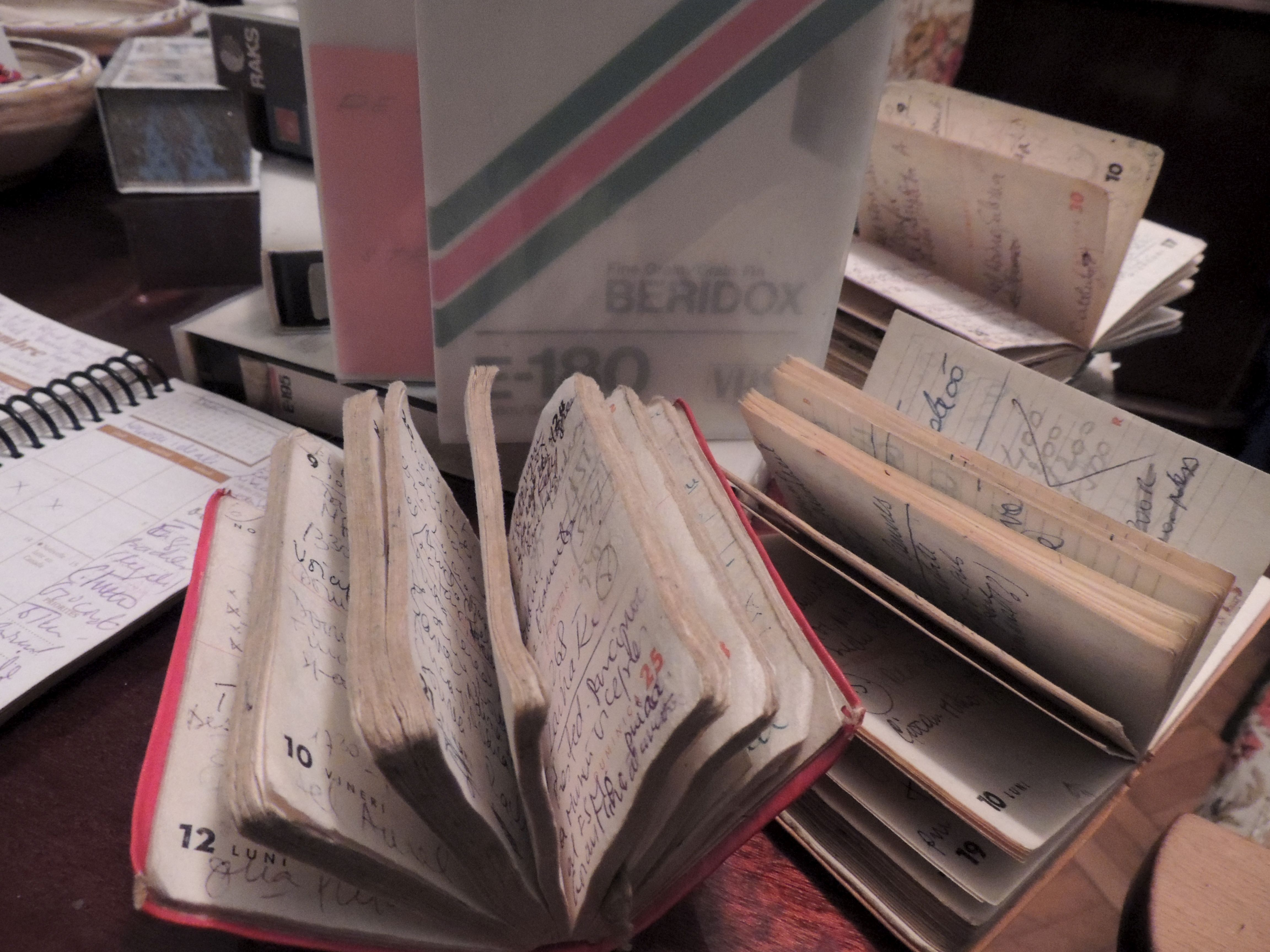 Notebooks including all the titles of the films which Irina Margareta Nistor translated