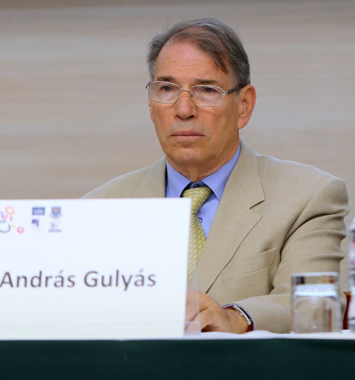 Ambassador András Gulyás on a Conference, 2010