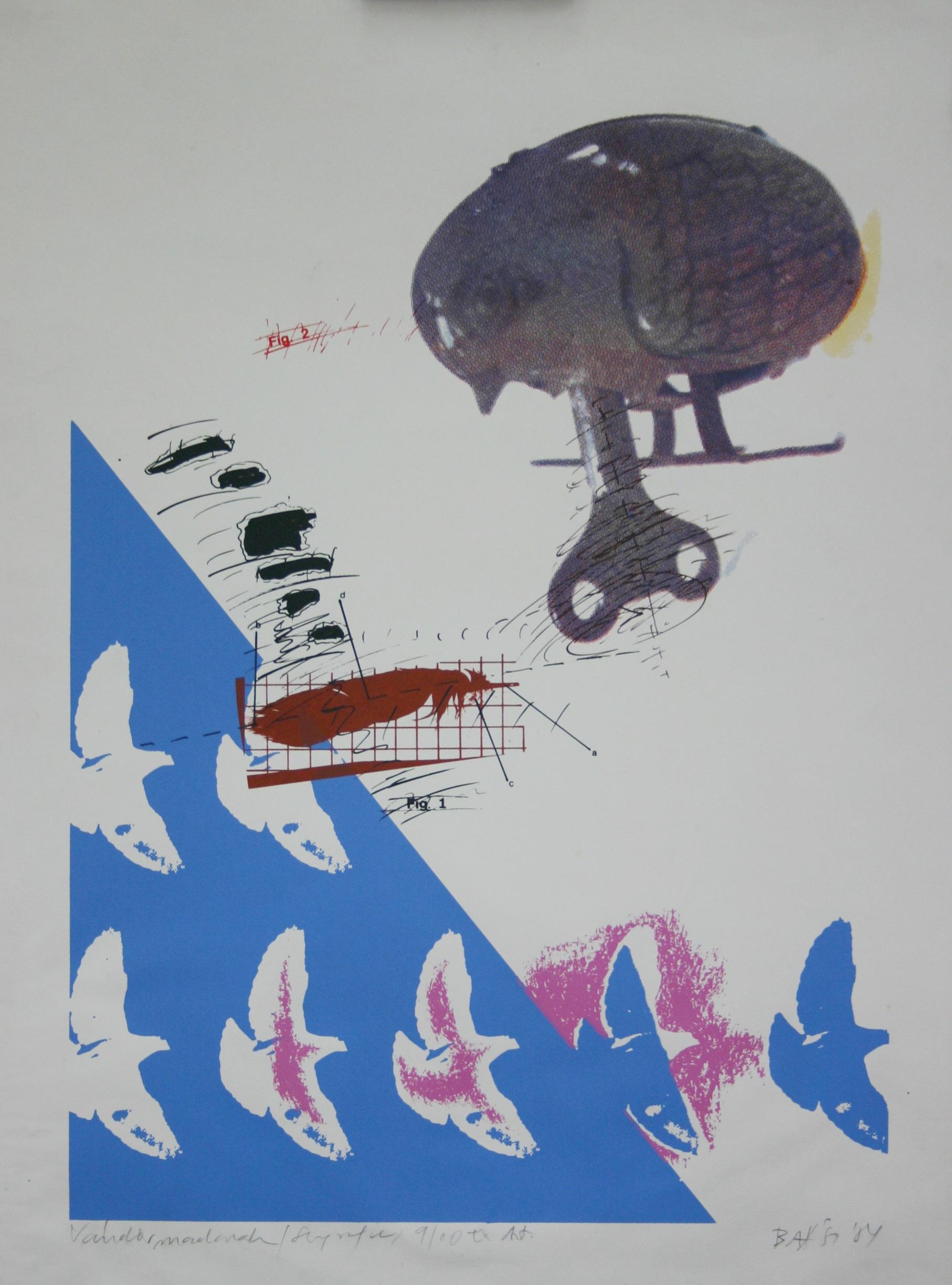 Imre Baász: Migrating Birds, silkscreen print, 54x35.5 cm, 1984